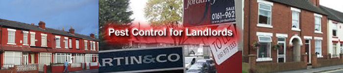 Pest Control Services for Landlords in Burnage